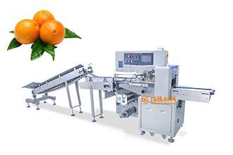 有没有包装水果的机器?水果自动包装机是不错的选择